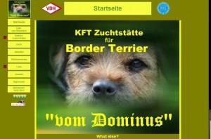 Borderterrier vom Dominus