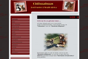 Chihuahuas und Red Hunter of South Afrika